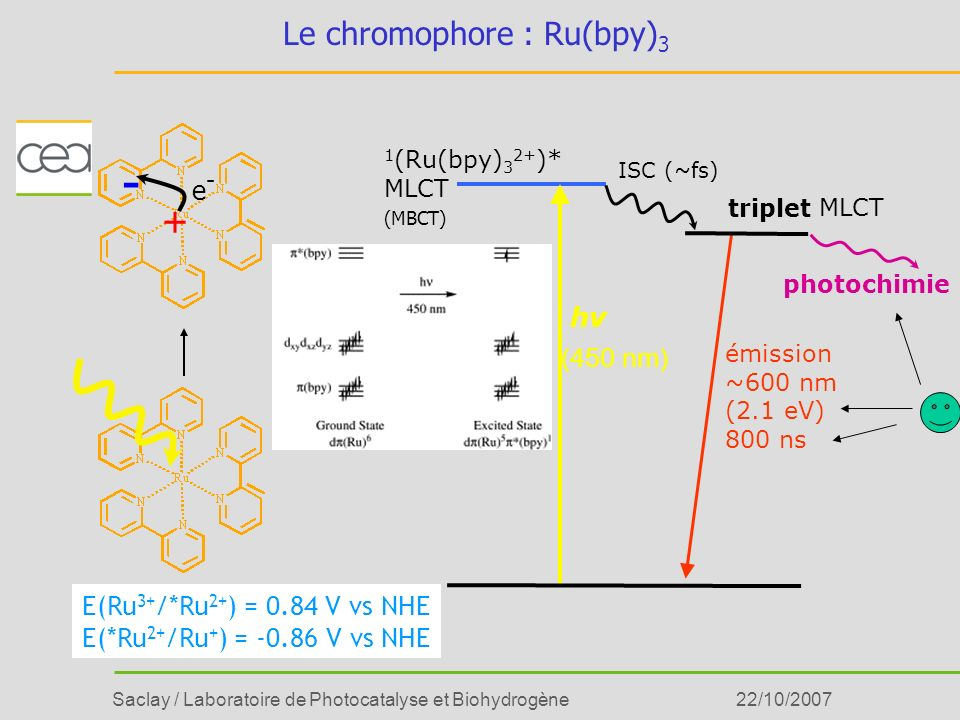 Le chromophore : Ru(bpy)3