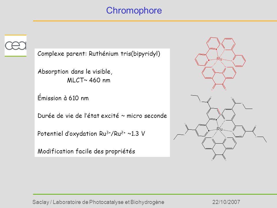 Chromophore Complexe parent: Ruthénium tris(bipyridyl)