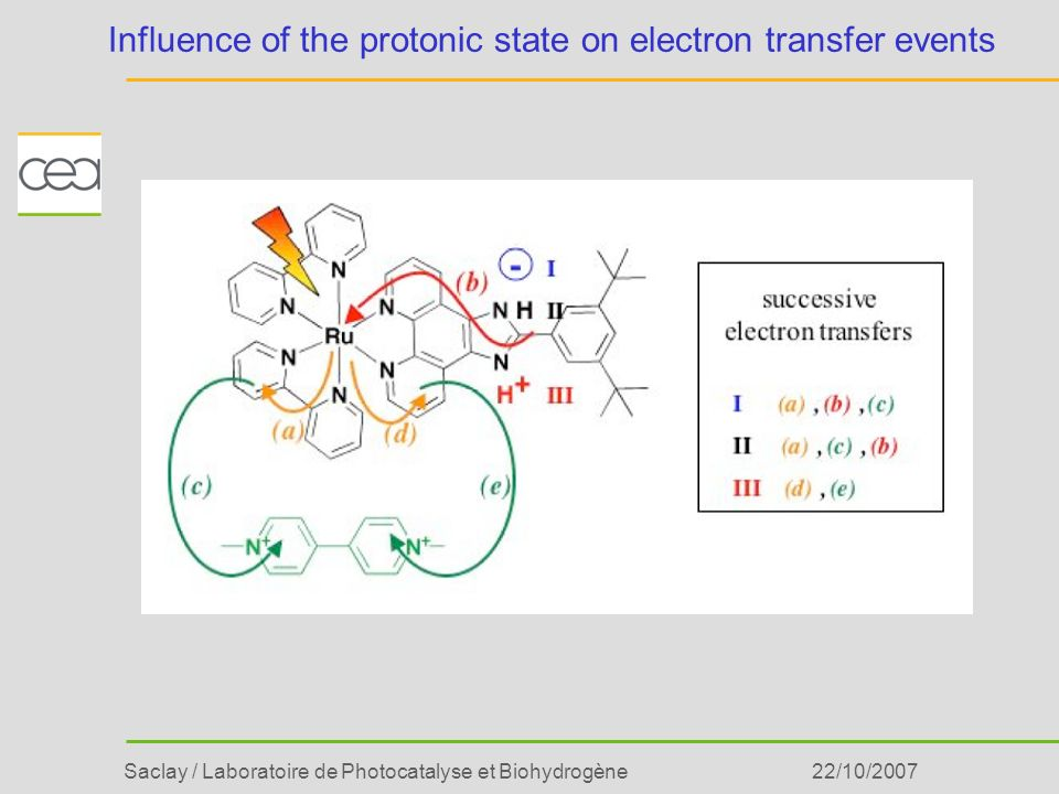 Influence of the protonic state on electron transfer events