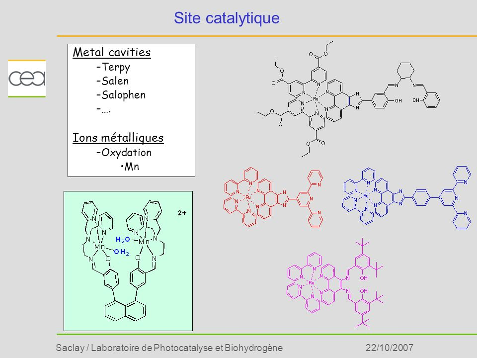 Site catalytique Metal cavities Ions métalliques Terpy Salen Salophen