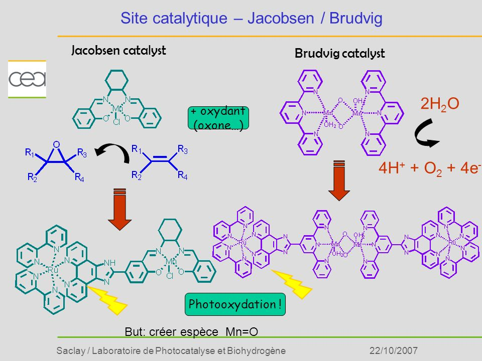 Site catalytique – Jacobsen / Brudvig