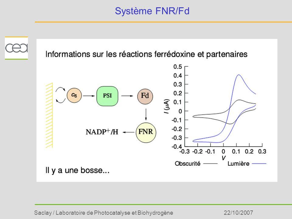 Système FNR/Fd 22/10/2007