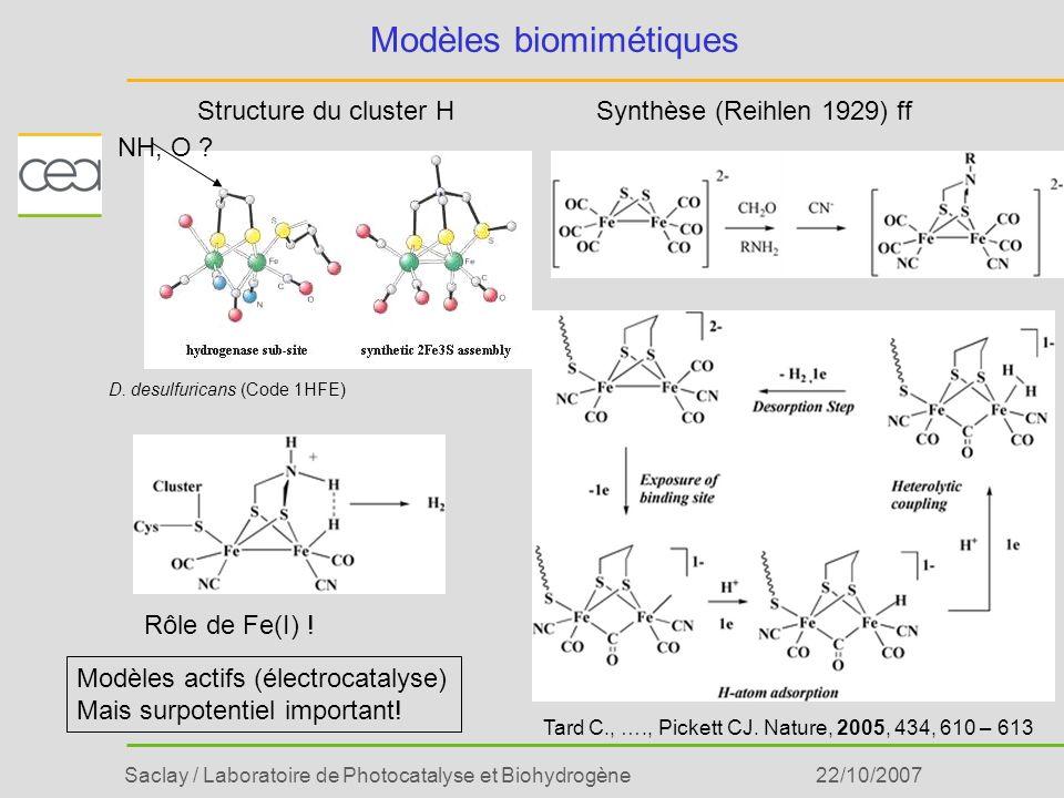 Modèles biomimétiques