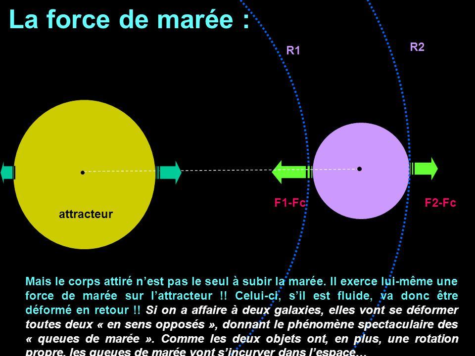 La force de marée : R2 R1 F1-Fc F2-Fc attracteur