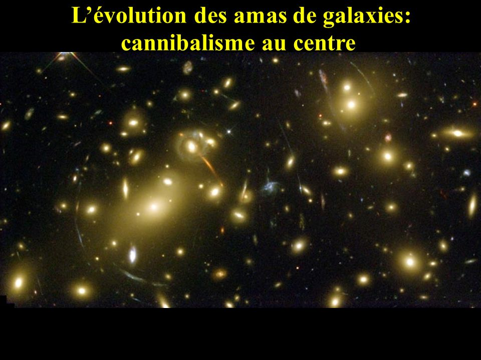 L'évolution des amas de galaxies: cannibalisme au centre