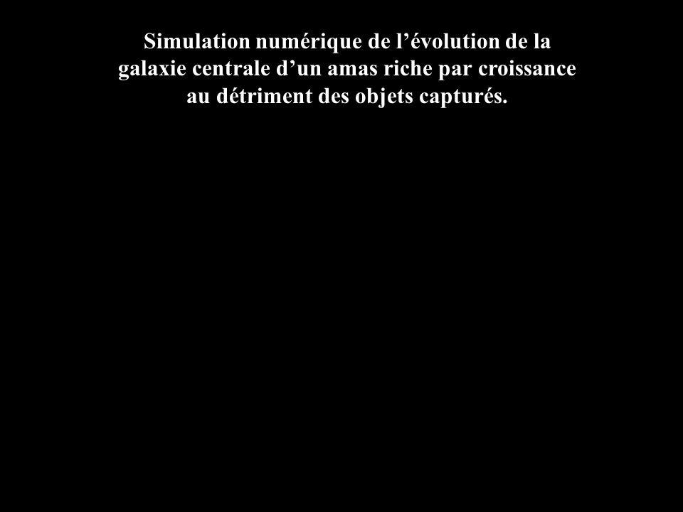 Simulation numérique de l'évolution de la