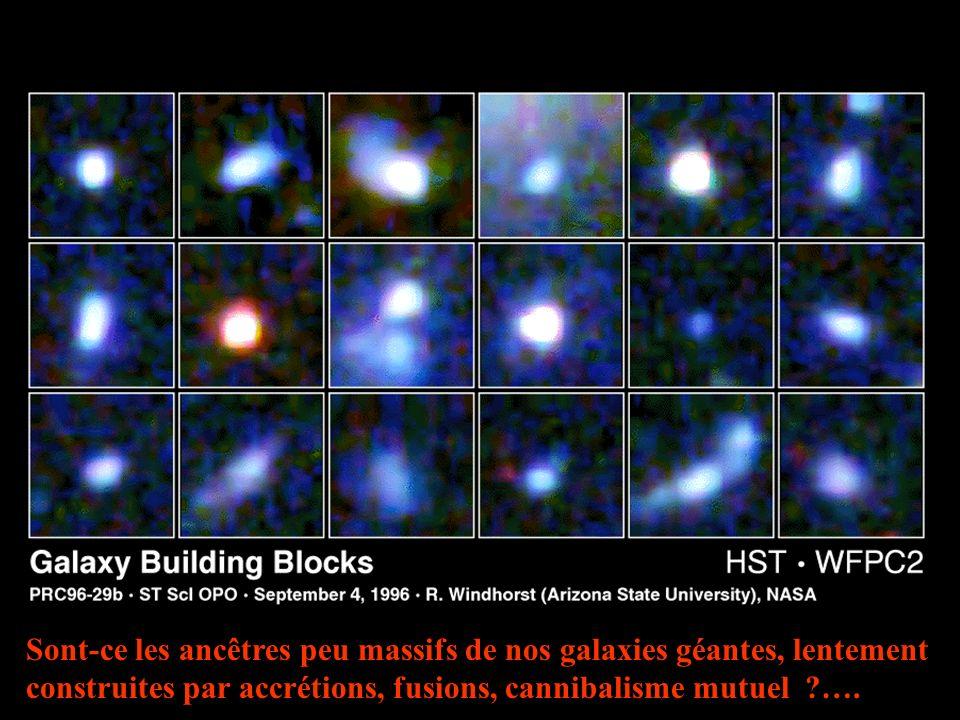 Sont-ce les ancêtres peu massifs de nos galaxies géantes, lentement construites par accrétions, fusions, cannibalisme mutuel ….