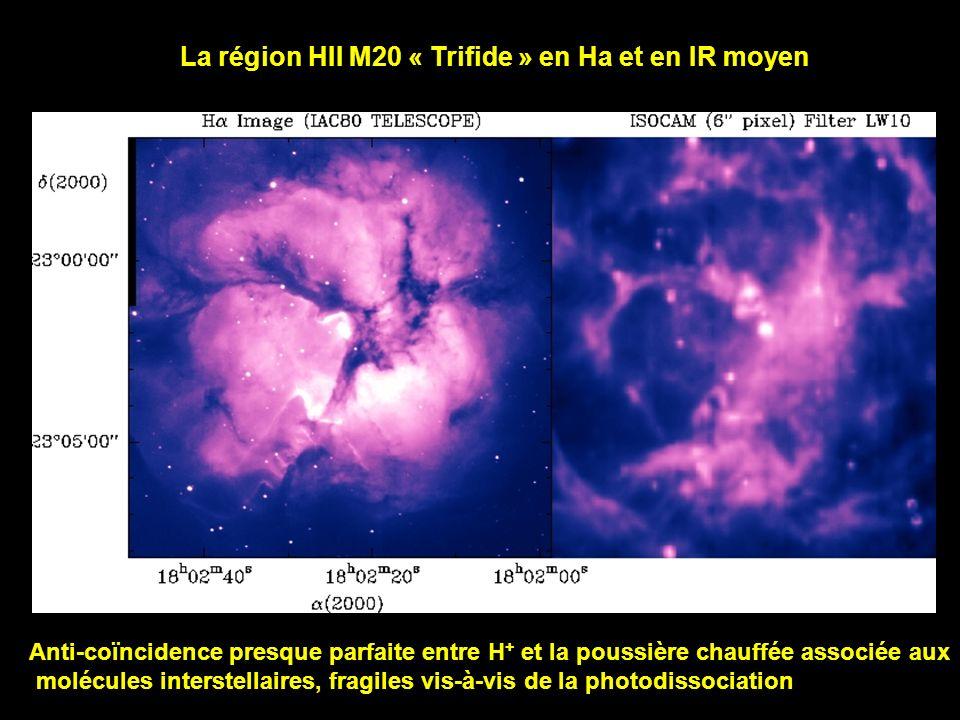 La région HII M20 « Trifide » en Ha et en IR moyen