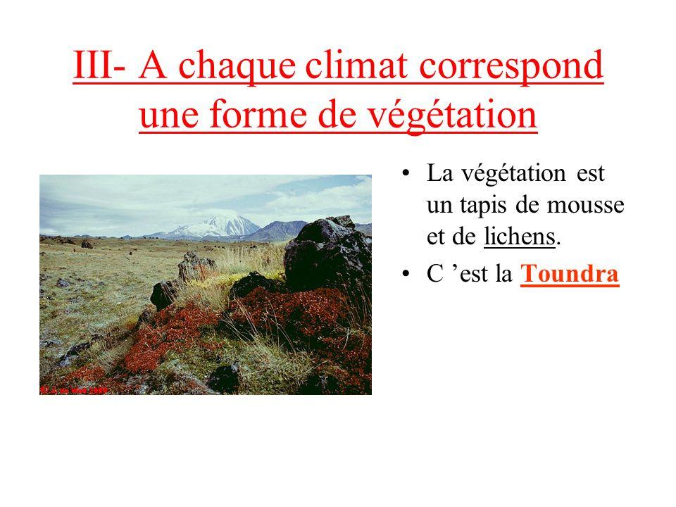 III- A chaque climat correspond une forme de végétation