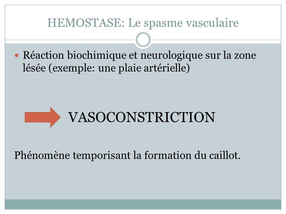 HEMOSTASE: Le spasme vasculaire