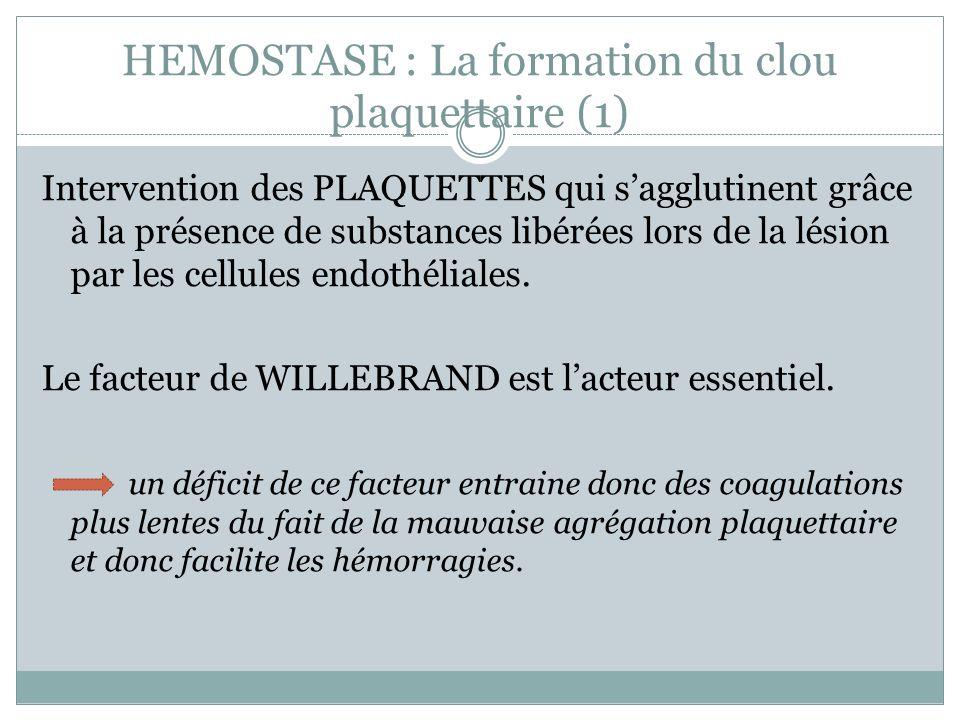 HEMOSTASE : La formation du clou plaquettaire (1)