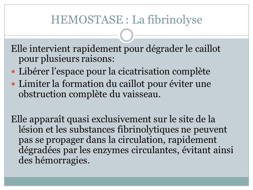 HEMOSTASE : La fibrinolyse