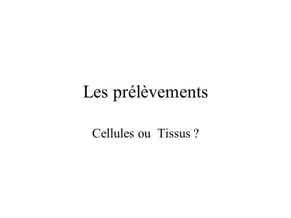 Les prélèvements Cellules ou Tissus