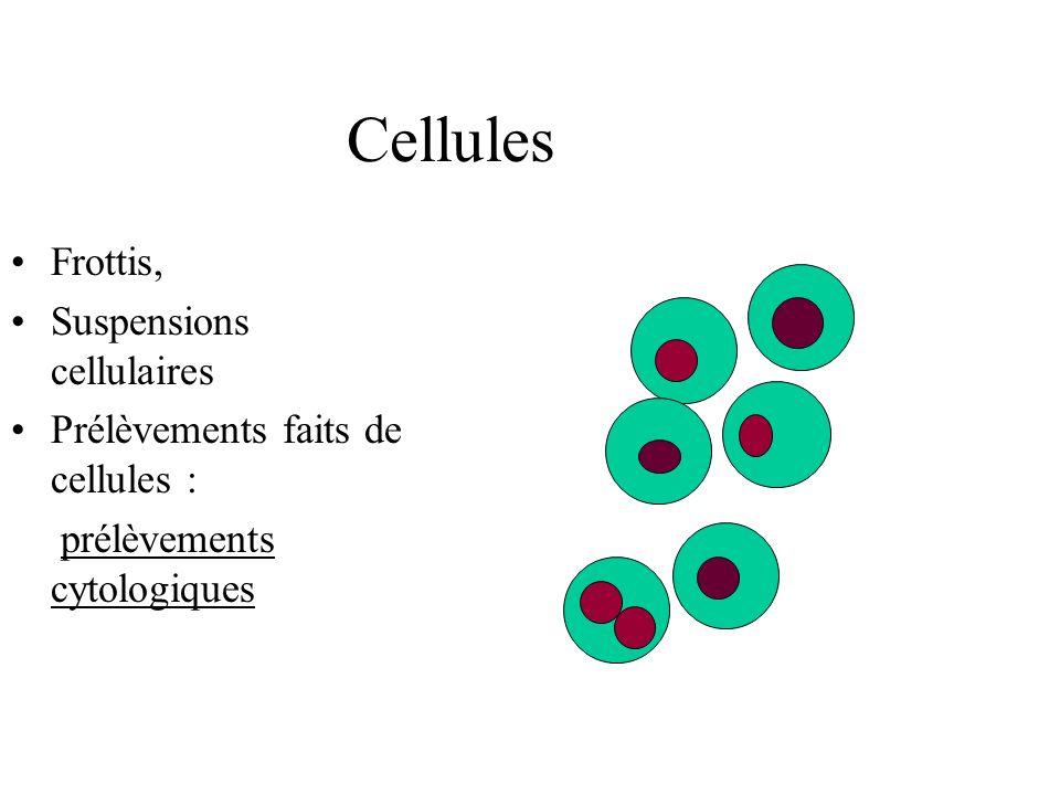 Cellules Frottis, Suspensions cellulaires