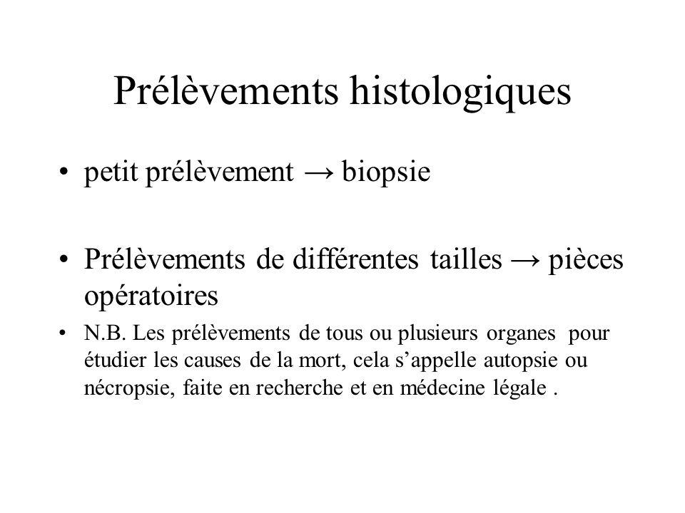 Prélèvements histologiques