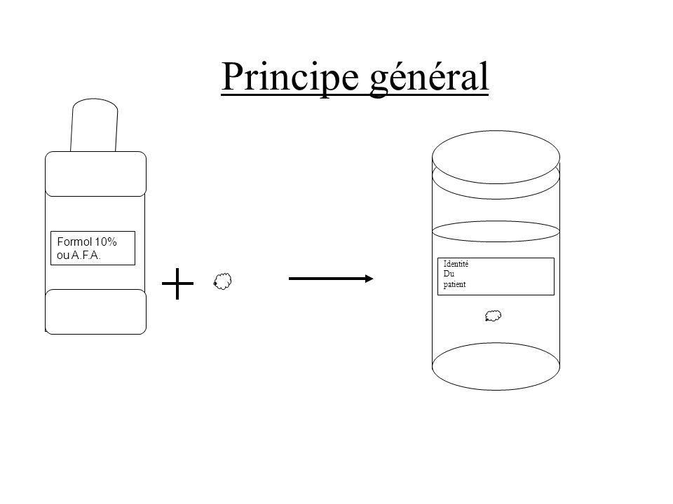 Principe général Formol 10% ou A.F.A. Identité Du patient