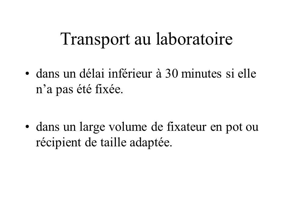 Transport au laboratoire