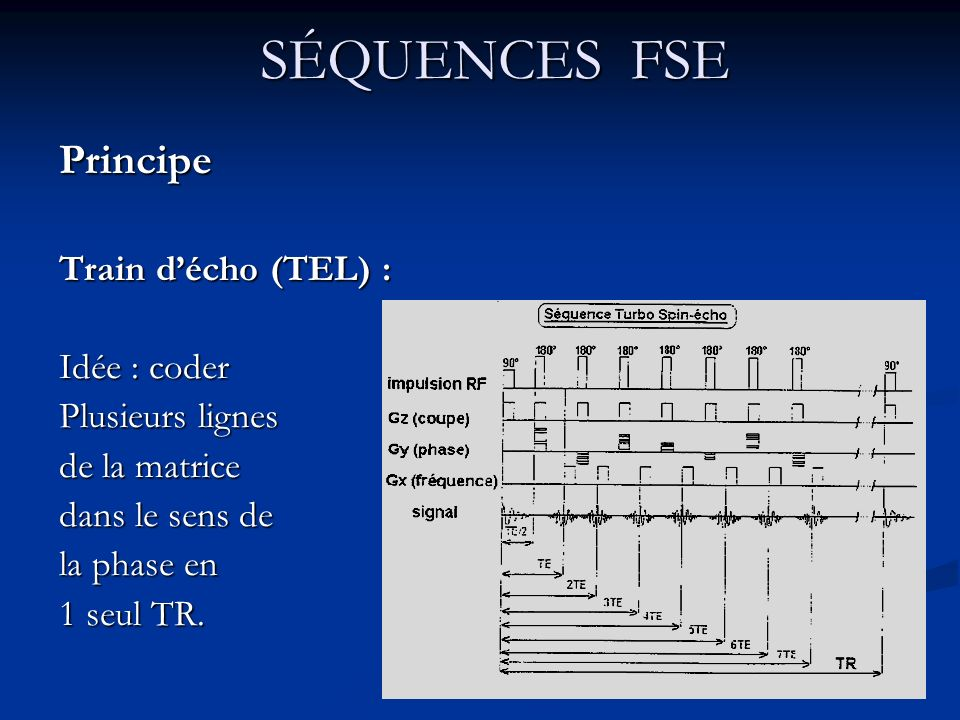 SÉQUENCES FSE Principe Train d'écho (TEL) : Idée : coder