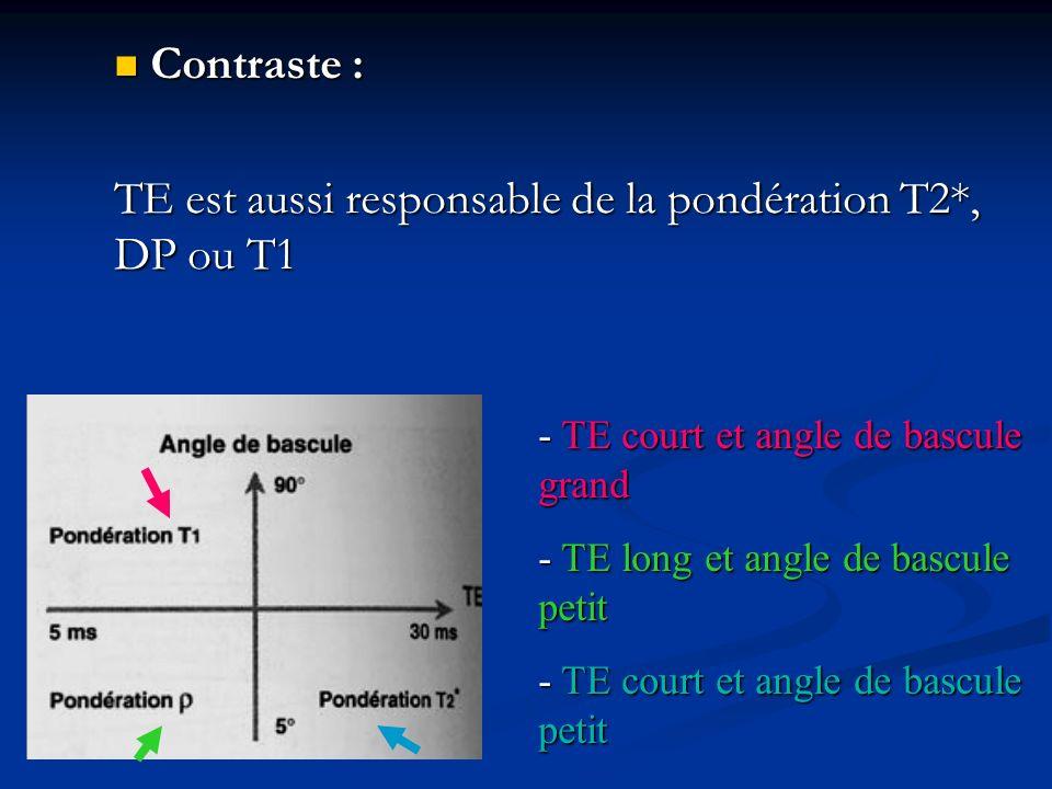 TE est aussi responsable de la pondération T2*, DP ou T1