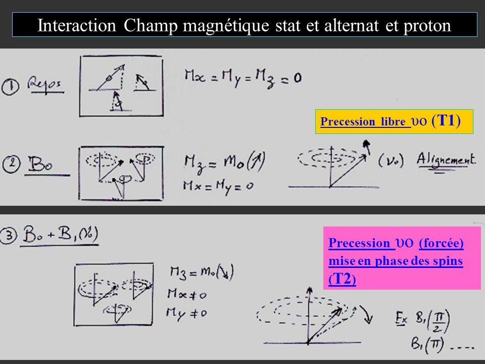 Interaction Champ magnétique stat et alternat et proton