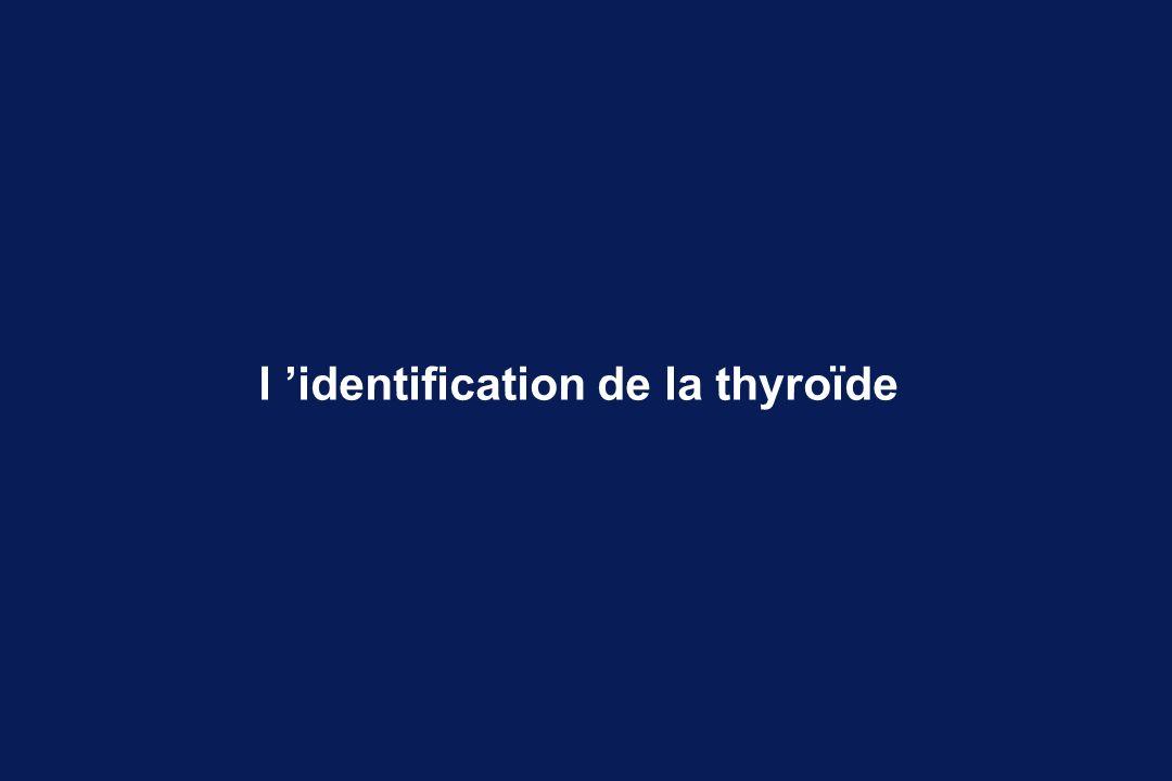 l 'identification de la thyroïde