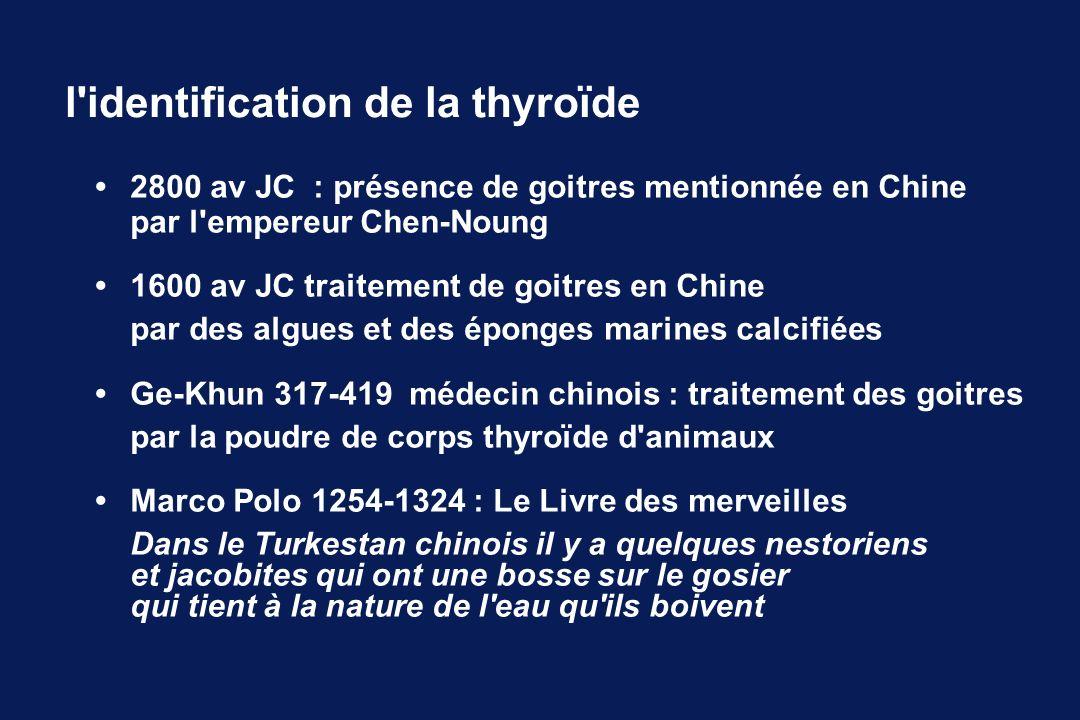 l identification de la thyroïde