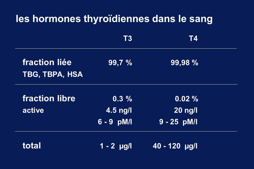 les hormones thyroïdiennes dans le sang