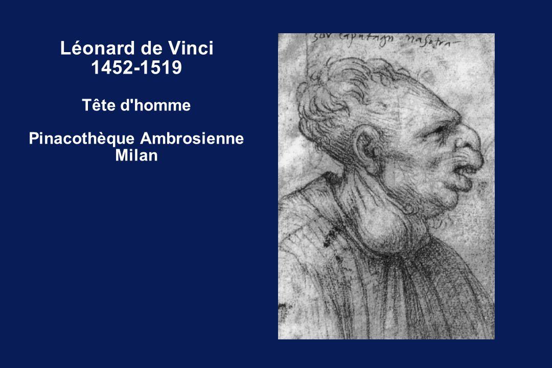 Léonard de Vinci 1452-1519 Tête d homme Pinacothèque Ambrosienne Milan