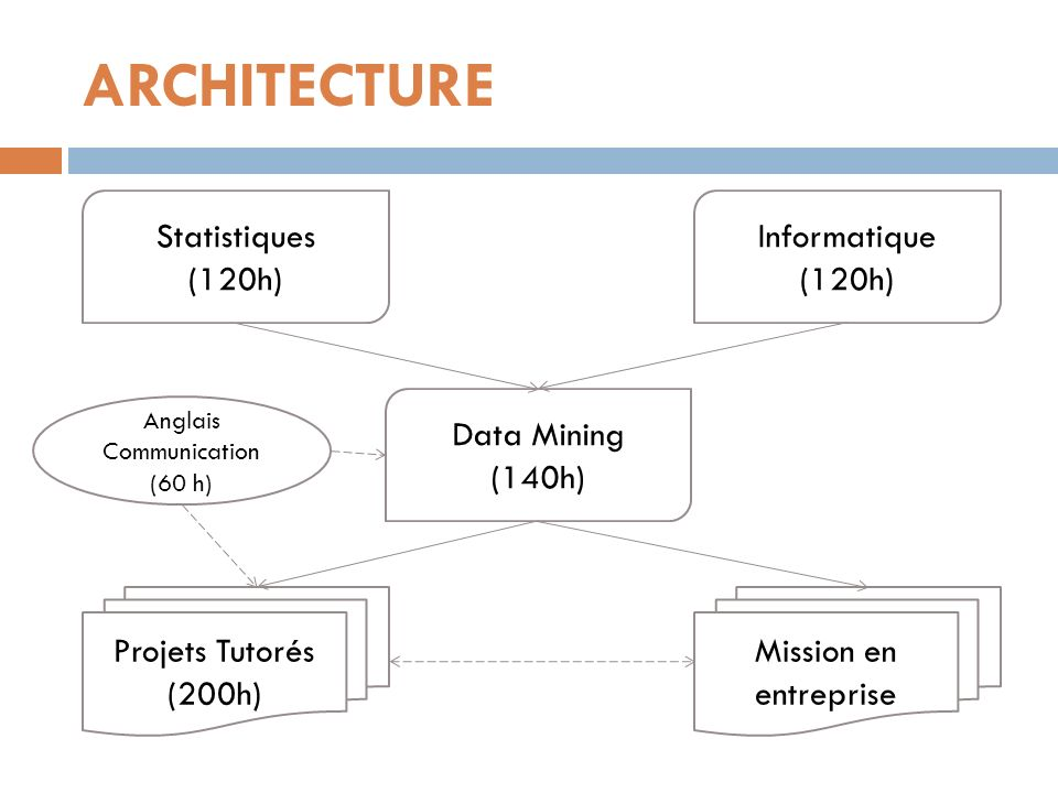 ARCHITECTURE Statistiques (120h) Informatique (120h) Data Mining