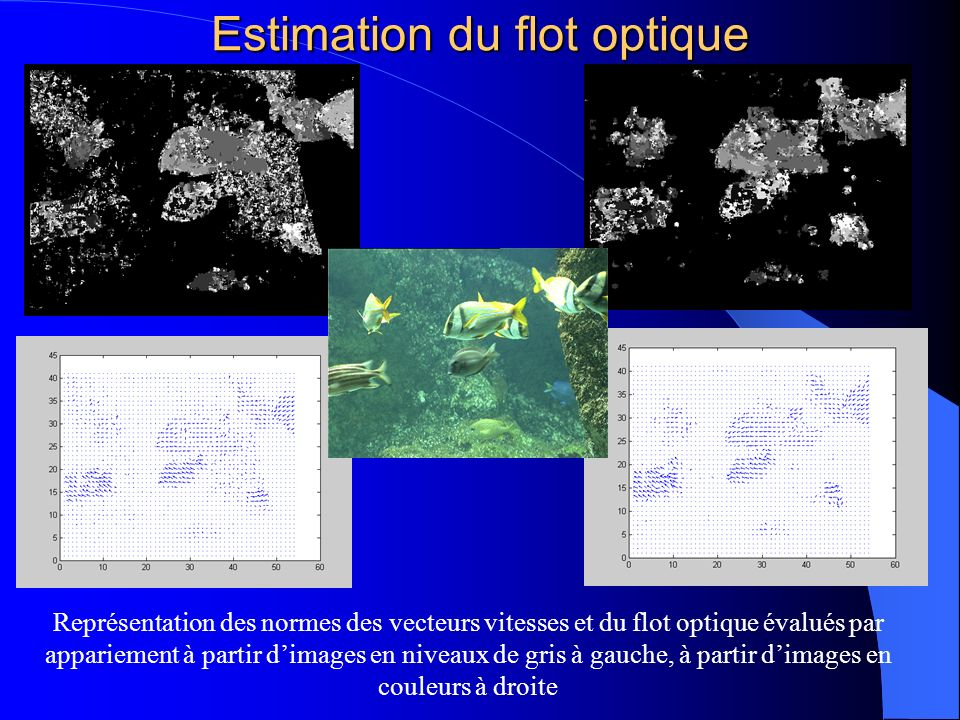 Estimation du flot optique