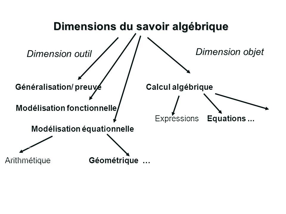 Dimensions du savoir algébrique
