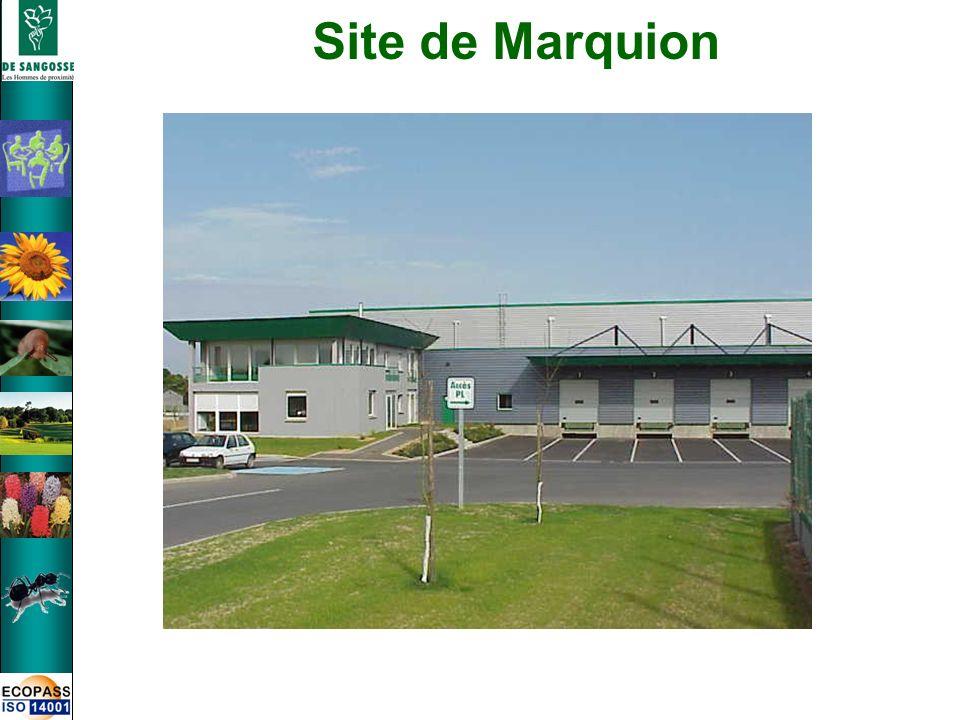 Site de Marquion