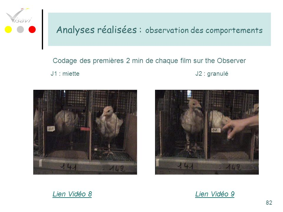 Analyses réalisées : observation des comportements