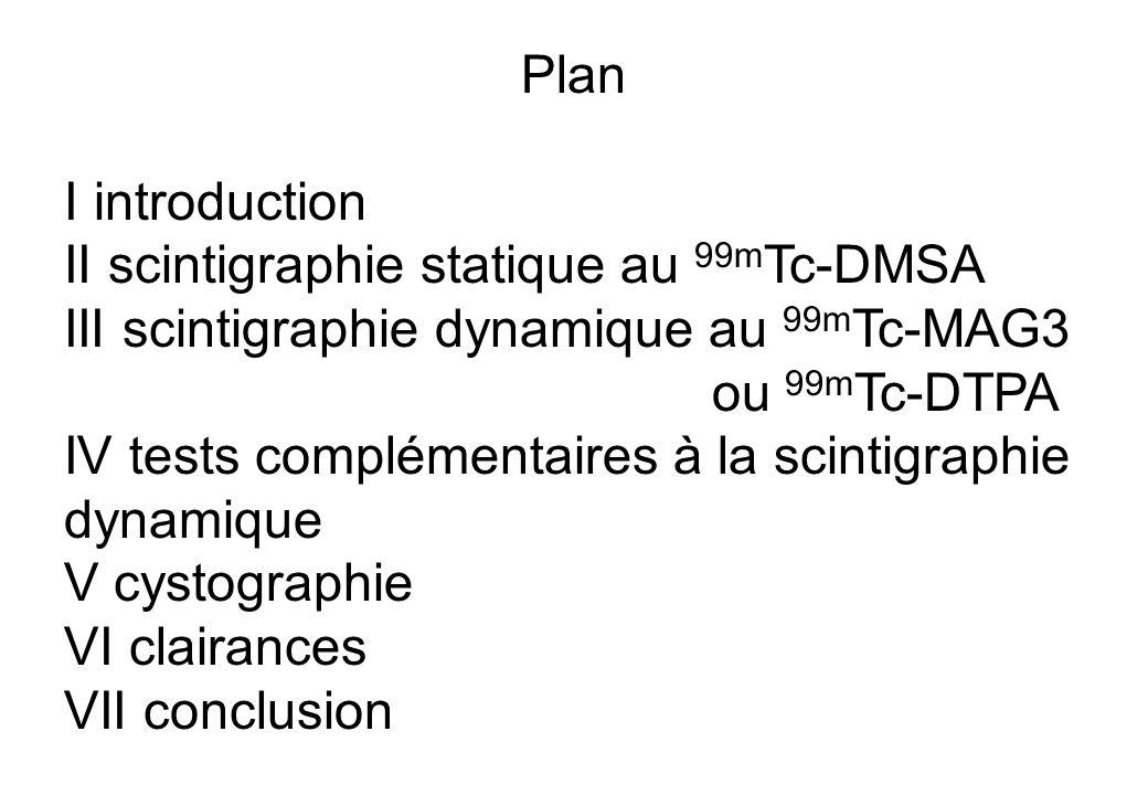 II scintigraphie statique au 99mTc-DMSA
