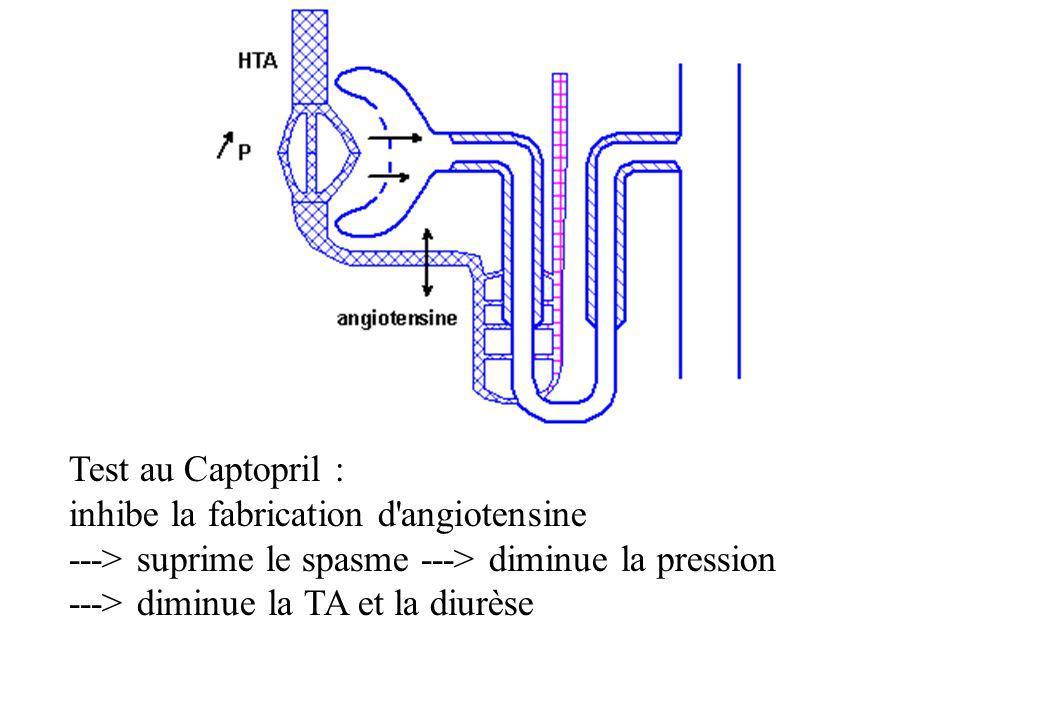 Test au Captopril :inhibe la fabrication d angiotensine. ---> suprime le spasme ---> diminue la pression.