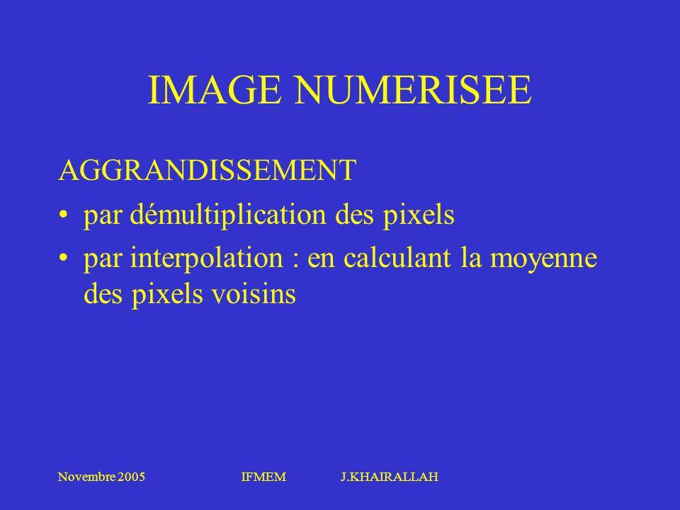 IMAGE NUMERISEE AGGRANDISSEMENT par démultiplication des pixels