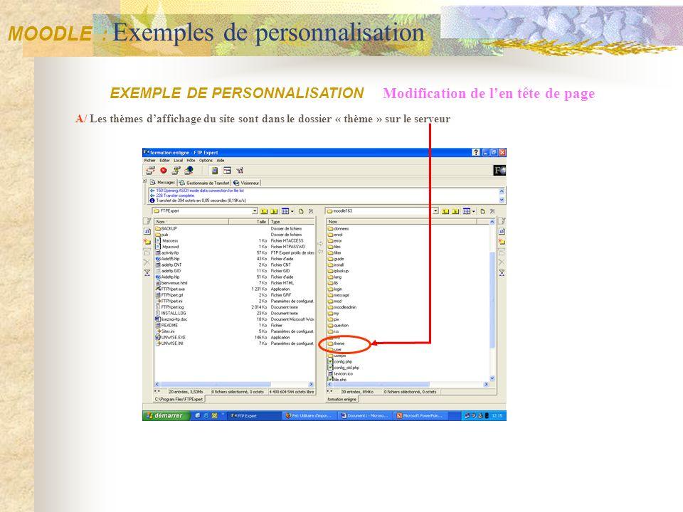 MOODLE : Exemples de personnalisation