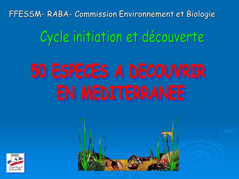 Cycle initiation et découverte
