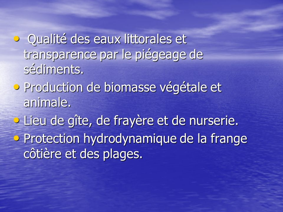Production de biomasse végétale et animale.