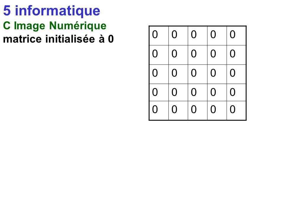 5 informatique C Image Numérique matrice initialisée à 0