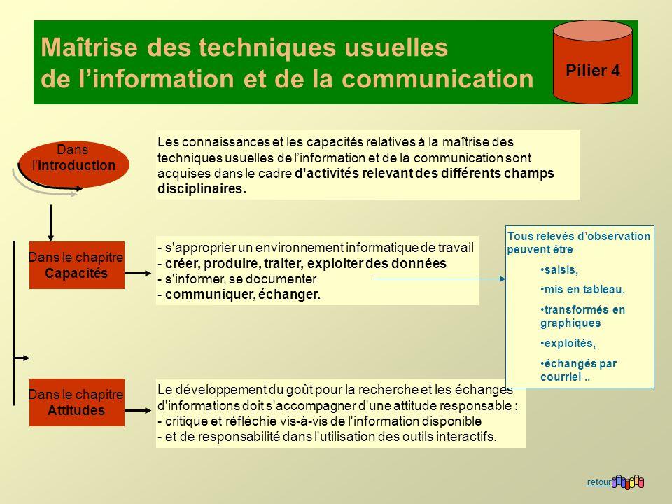 Maîtrise des techniques usuelles de l'information et de la communication