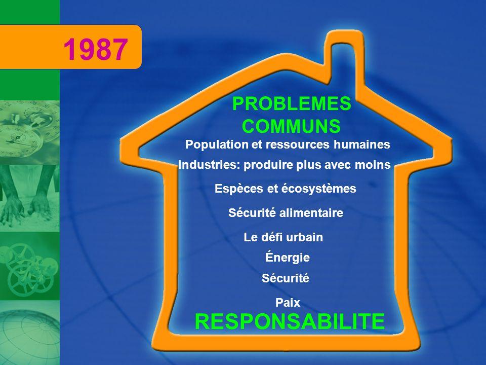 1987 RESPONSABILITE PROBLEMES COMMUNS