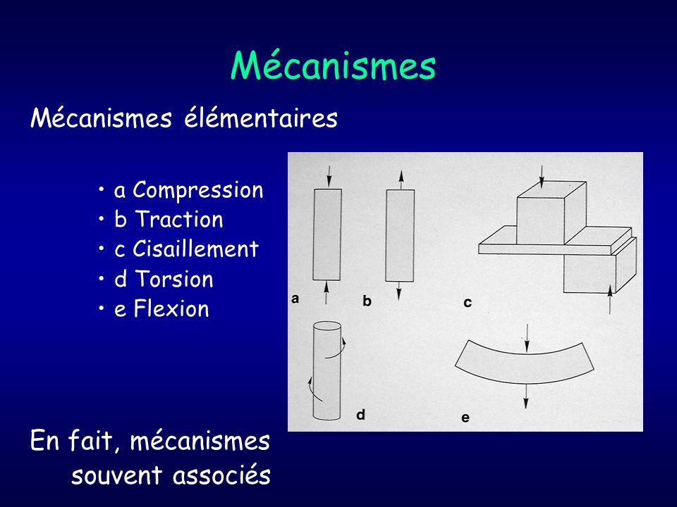 Mécanismes Mécanismes élémentaires En fait, mécanismes