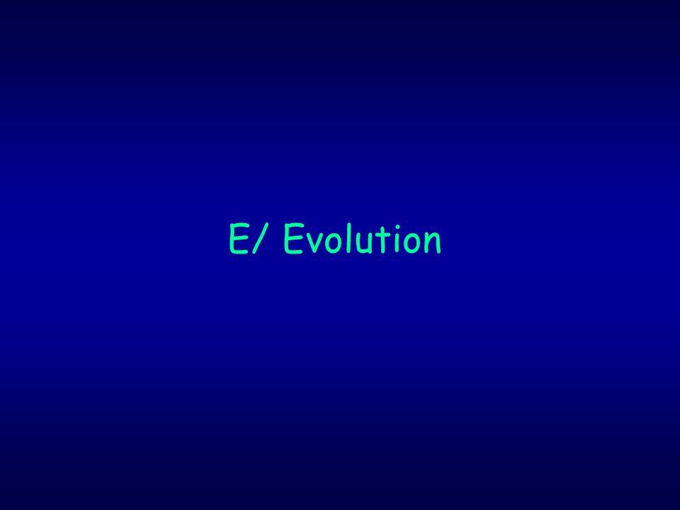 E/ Evolution