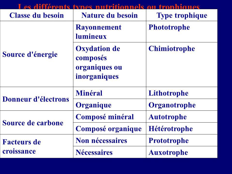 Les différents types nutritionnels ou trophiques
