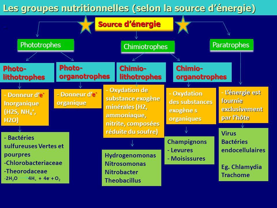Les groupes nutritionnelles (selon la source d'énergie)