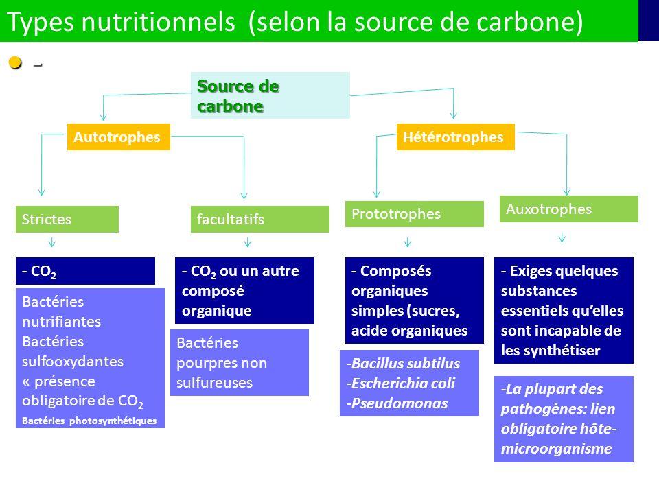 Types nutritionnels (selon la source de carbone) -