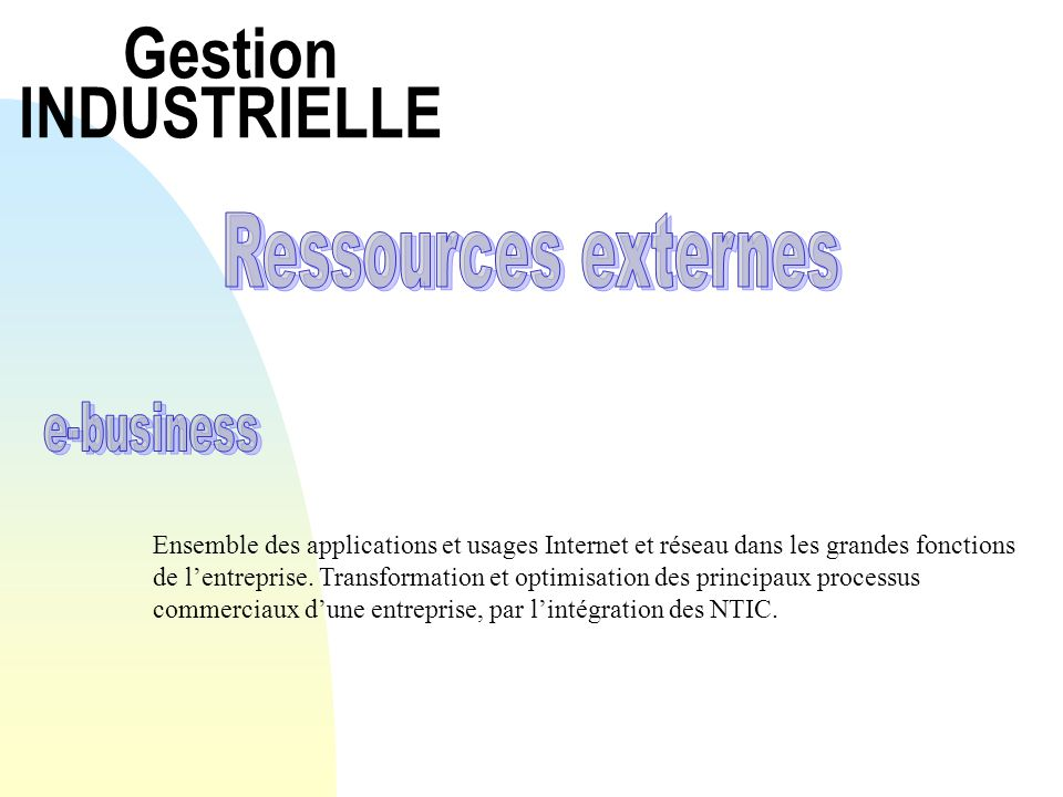 Gestion INDUSTRIELLE Ressources externes e-business