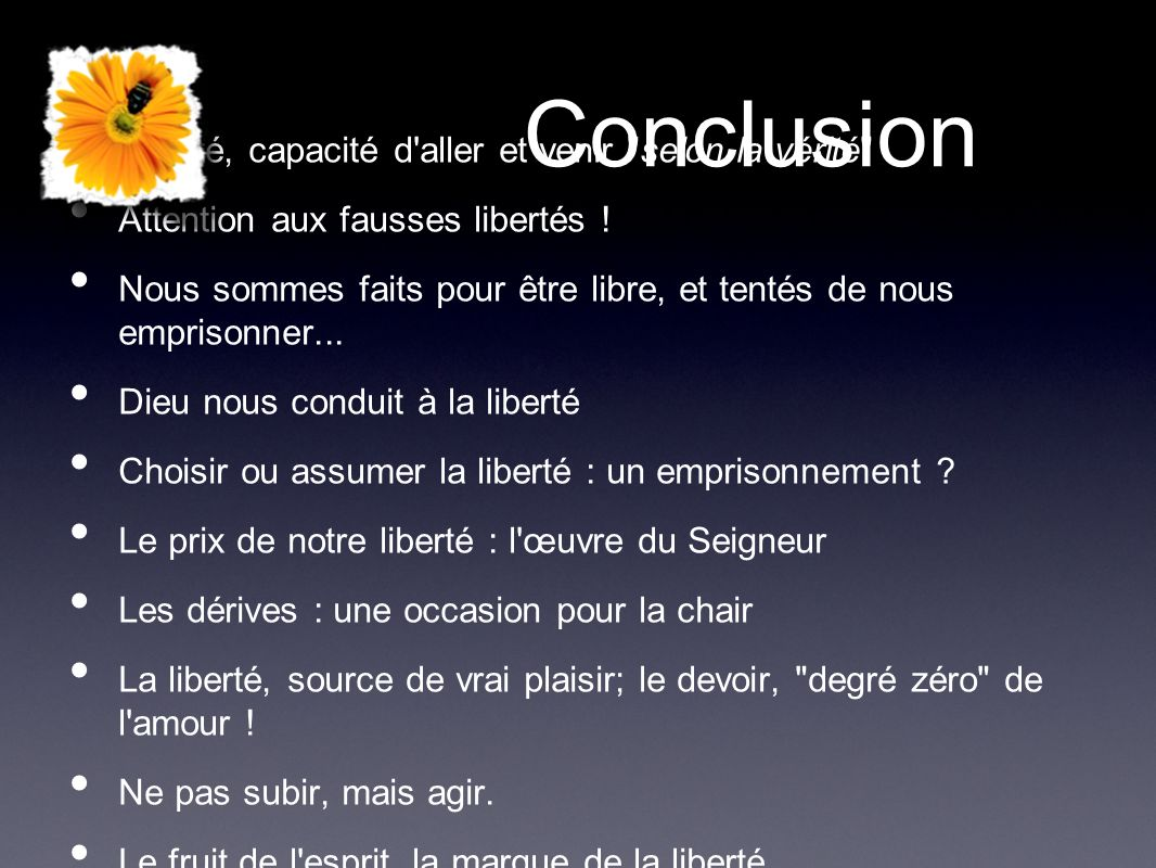Conclusion Liberté, capacité d aller et venir selon la vérité