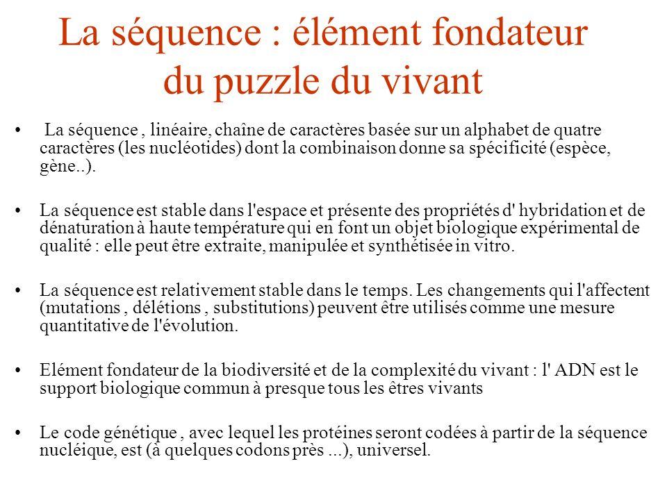 La séquence : élément fondateur du puzzle du vivant